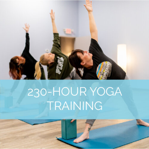 230-Hour Yoga Training