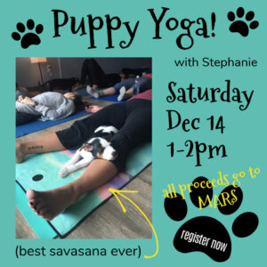Puppy yoga social media tile promoting Dec. 14 event.